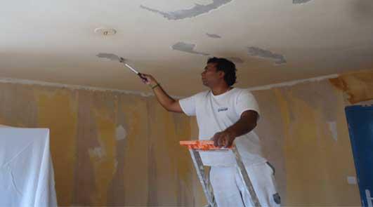 exemple de devis peinture plafond travaux int rieure peintre en b timent. Black Bedroom Furniture Sets. Home Design Ideas